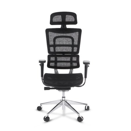 viva-ergonomic-office-chairs-with-adjustable-lumbar-support